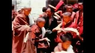 Документальный фильм: Тибет (BBC)