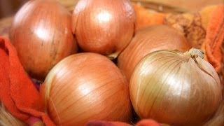 Health Benefits Onions