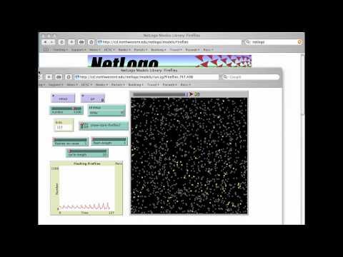 NetLogo Tutorial #1 Browsing the NetLogo Model Library