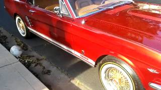 oakland mustangs 1966 gt and 1968 convertible