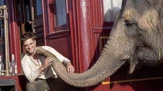 8 лучших фильмов, похожих на Воды слонам! (2011)