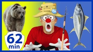 funny videos for kids complication with funny clowns fishing for kids animals zoo magic tricks