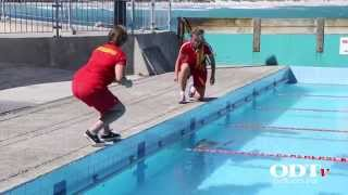 Sea Lion Takes A Dip At Dunedin Pool