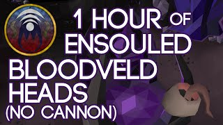 1 Hour of Ensouled Bloodveld Heads (no cannon)