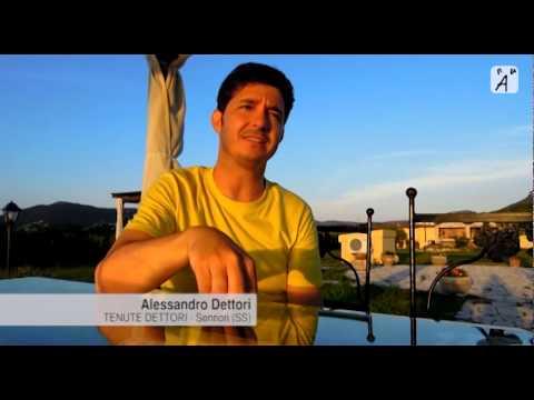 Intervista ad Alessandro Dettori