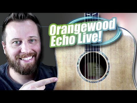 The Orangewood ECHO LIVE -  A Guitar That Can Do It All!