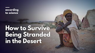 How to Survive Being Stranded in the Desert, According to Science