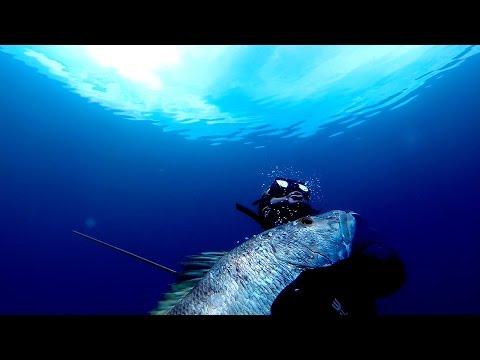 The Sling - Spearfishing With Hawaiian Sling - Bahamas