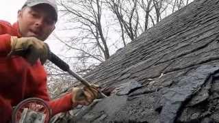 Hands-On Raccoon Removal Procedure