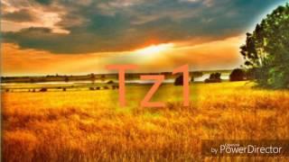 Jede Zelle meines Körpers ist glücklich feat. GermanLetsPlay u. Zombey [by Pz1-Musik]