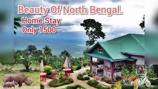 Beauty Of North Bengal. gorumara national park| Chapramari Wildlife Sanctuary | Kumai #Home stay