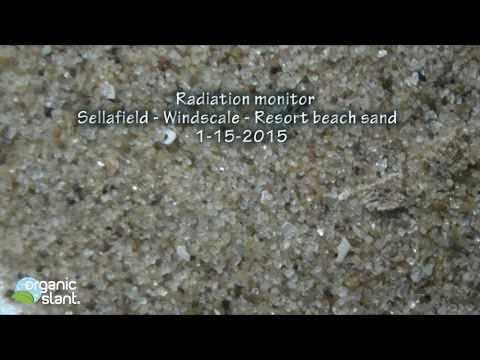 Radiation monitor Sellafield - Windscale - Resort beach sand 1-15-2015 | Organic Slant