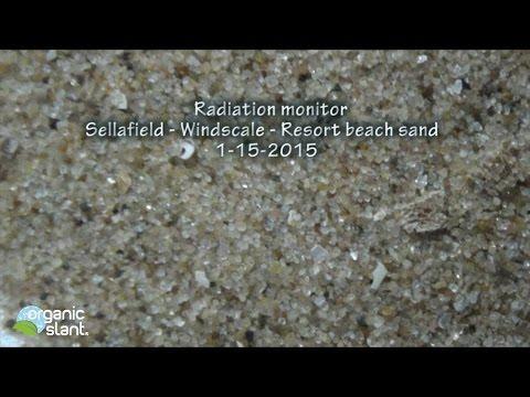 Radiation monitor Sellafield - Windscale - Resort beach sand 1-15-2015 | Organic Slant