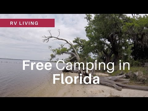 RV Living | Free Camping in Florida