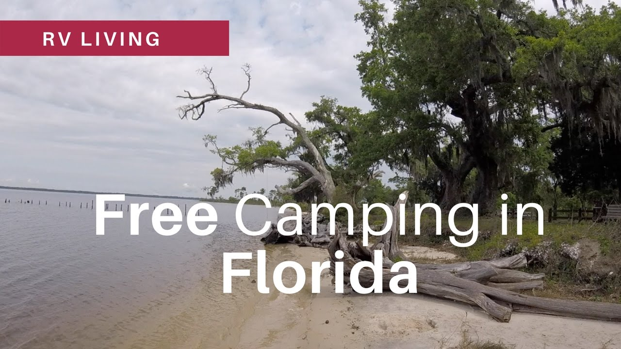 rv living | free camping in florida - youtube