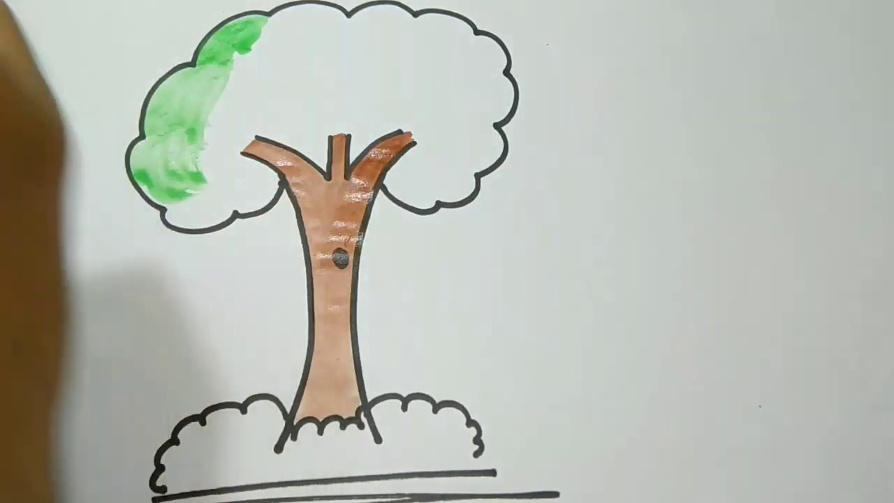 Very Simple Way To Draw And Colour A Tree Very Easy Simple Steps For Kids Teach To Draw And Colour Youtube