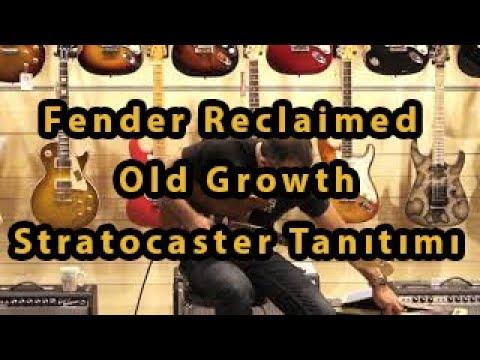 Fender Reclaimed Old Growth Stratocaster Tanıtımı