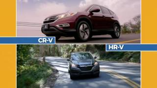 CT Adventures SC Accord CR-V