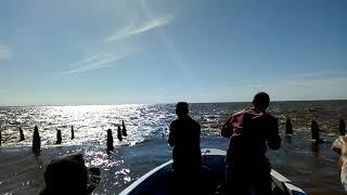 Metiendo el señuelo en Malecones de Berisso para pescar dorados