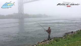 Demo Day at Cape Cod Canal! Black Hole USA 10' Surf II Heavy Rod