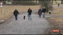 Hundeverordnung: Nur noch zwei Meter Leine erlaubt in Hessen