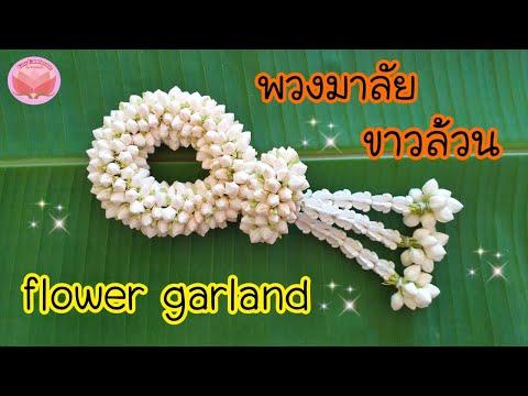 ร้อยพวงมาลัย | พวงมาลัยดอกพุด และวิธีทำดอกข่าจากดอกพุด ขาวล้วน | พวงมาลัยไหว้พระ | flower garland