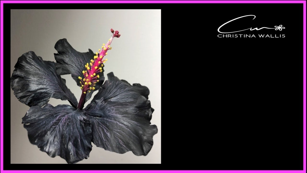 Hibiscus Flower Tutorial Cold Porcelain Or Gumpaste 2018 Youtube