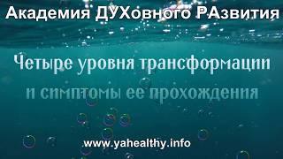 Четыре уровня трансформации и симптомы ее прохождения  | Обучение  Нижнем Новгороде