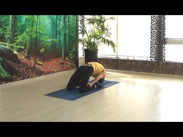 Yoga Strength & Balance by Yogi Kaivalyananda