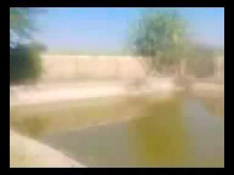 Kewal 2018 video songs mp4 HD films Indian