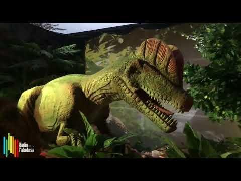 DinoWorld llega a San Pedro Sula Honduras, Mall Multiplaza | Radio Fabulosa 102.1