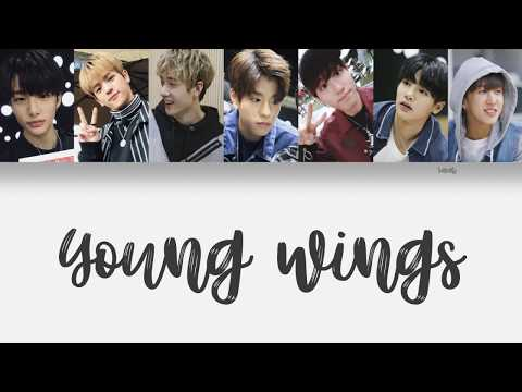 Stray Kids (스트레이 키즈) - 어린날개 (Young Wings) [Han/Eng/Rom Color Coded Lyrics]