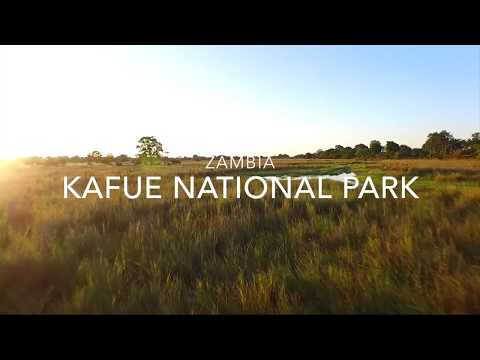 Breathtaking Kafue National Park in Zambia
