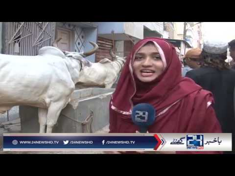 8 Cows Lifted by Crane from 4th Floor Orangi Town Karachi