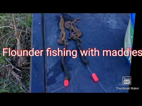 Fishing For Flounders #fail
