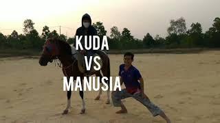 Kuda VS manusia & Motor!