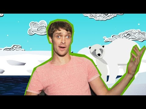 All Of Your BURNING Questions Answered! | Earth Your While w/ Zach Anner