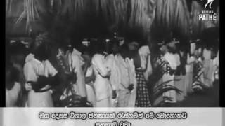 Repeat youtube video sri lankawe palamu nidahas dinaya