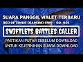 Suara Panggil Walet Red Optimus Diamond Centra Walet Swiftlets Super Caller  Mp3 - Mp4 Download