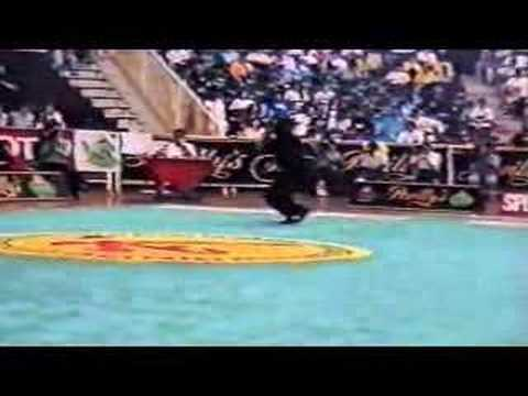 Wushu  Ray Park doing Chang Quan on the 93 Wushu Worlds