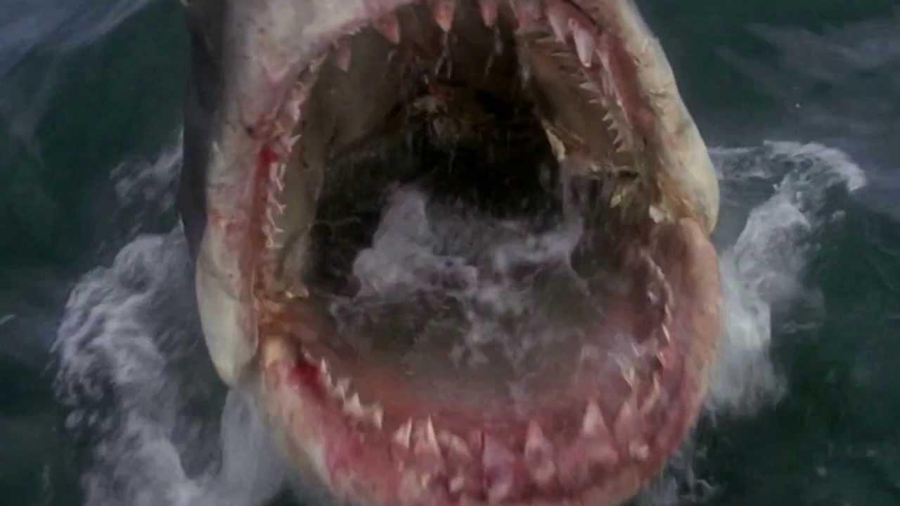 Killer Crab Whale Vs Mermaid Assassins Official Trailer