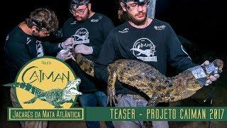 Projeto Caiman - Jacarés da Mata Atlântica (TEASER OFICIAL 2017)