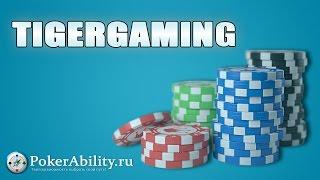 TigerGaming | Tiger Gaming. Обзор