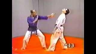 Hapkido 1   Basic Techniques