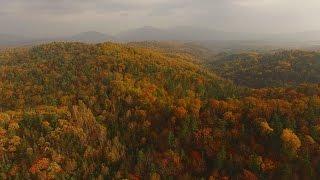 Прогулка в золотую приморскую осень Golden autumn in Primorye