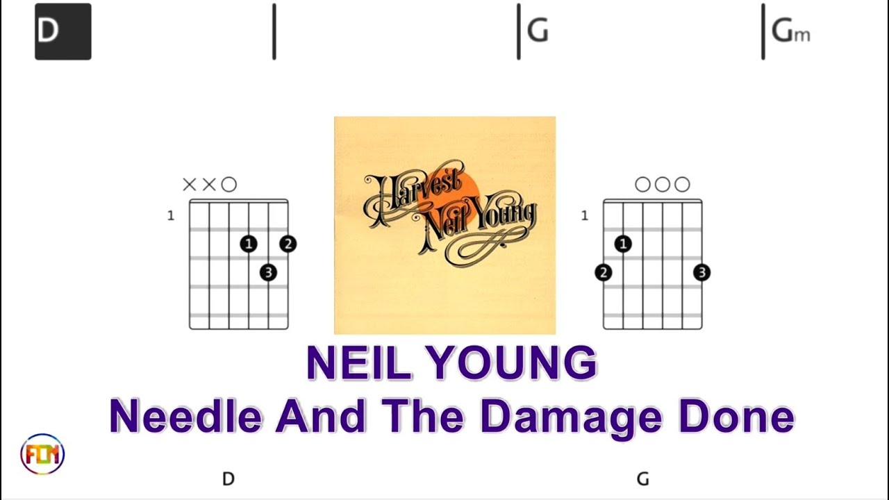 NEIL YOUNG Needle And The Damage Done   Chords & Lyrics like a Karaoke HD