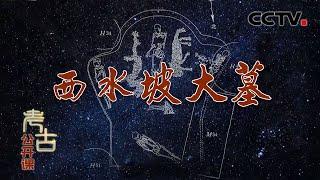 《考古公开课》 20200510 西水坡大墓  CCTV科教