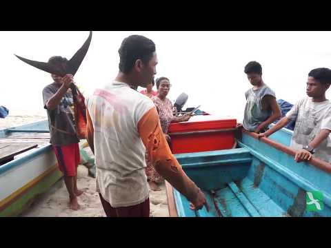 Fair Trade di Perikanan Pulau Buru