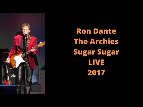 Ron Dante  The Archies  LIVE Sugar Sugar  Happy Together Tour, Albany, NY  6/17/17