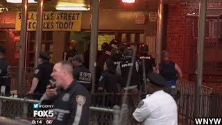 Dozens Of Alleged Gang Members Arrested In NYC Sweep